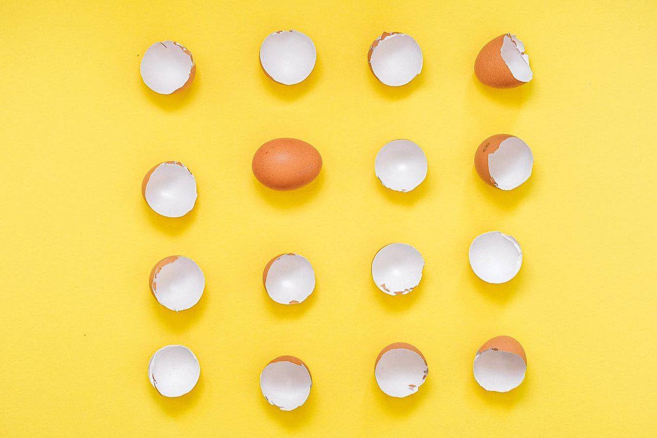 broken eggshells on a yellow background